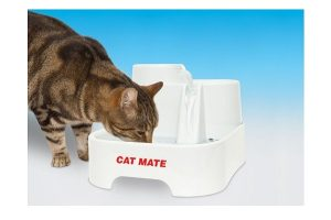 Cat Mate drinking fountain