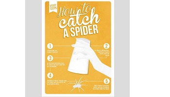 Funny poster gift
