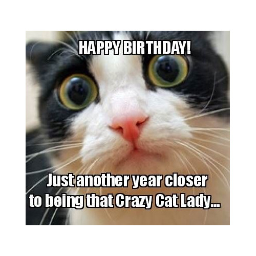 Happy birthday. Just another year closer to being that crazy cat lady. https://giftedgeek.co.uk/