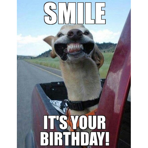 Smile, it's your birthday. https://giftedgeek.co.uk/