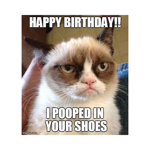 Happy birthday. I pooped in your shoes meme
