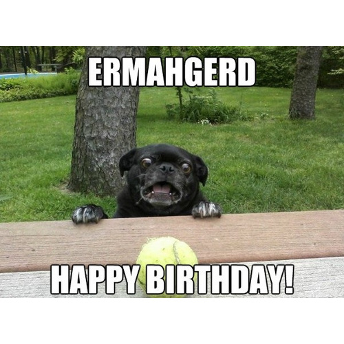 Ehmahgerd happy birthday meme