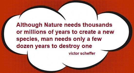 victor scheffer quote